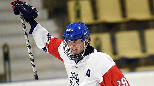 Čeští hokejoví reprezentanti zdolali v posledním ze tří přípravných utkání na příbramském ledě Rusko 5:3