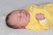 Lada Majerníková z Korázovic se narodila 6. prosince 2018 a vážila 3310 g a měřila 47 cm.