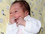 Štěpánka Hrstková se narodila 28. listopadu s váhou 3,63 kg a mírou 51 cm Zdeňkovi a Kateřině z Příbrami. Doma už se na sestřičku těší Vojtíšek (2).