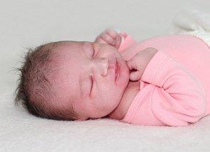 Ema ČERNÁ se narodila 10. května  s váhou 3,65 kg a mírou 51 cm Radce a Ivanovi z Podlesí.