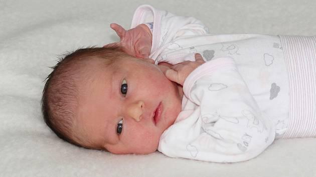 Zuzana Ploužková se narodila 18. března 2019 s váhou 3,93 kg a s mírou 55 cm Lucii a Jiřímu.