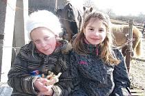 Dům dětí a mládeže na koňské farmě v Orlově.