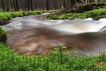 Třítrubecký potok.