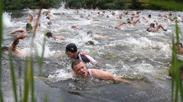 Brdonoši ve vodě.