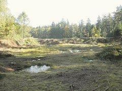 PÍSKOVNA ve Vacíkově, která je součástí Evropsky významné lokality Velký Raputovský rybník, kdy byly na podzim roku 2013 odstraněny náletové dřeviny.