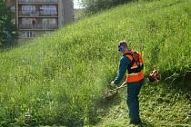 Spolu s vedoucím střediska Petrem Polívkou bude každodenně sekání, hrabání, nakládání a odvoz trávy zabezpečovat 29 zaměstnanců Technických služeb města Příbrami.