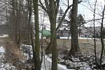 Koryto Litavky v příbramském lesoparku, ze kterého je potřeba odstranit některé stromy.