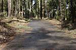 Řidiči by si měli dávat pozor na drobné větve na silnicích nižších tříd.