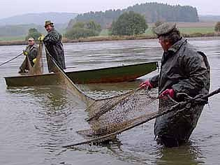 Rybáři na Podhůreckém rybníku ve Vranovicích.