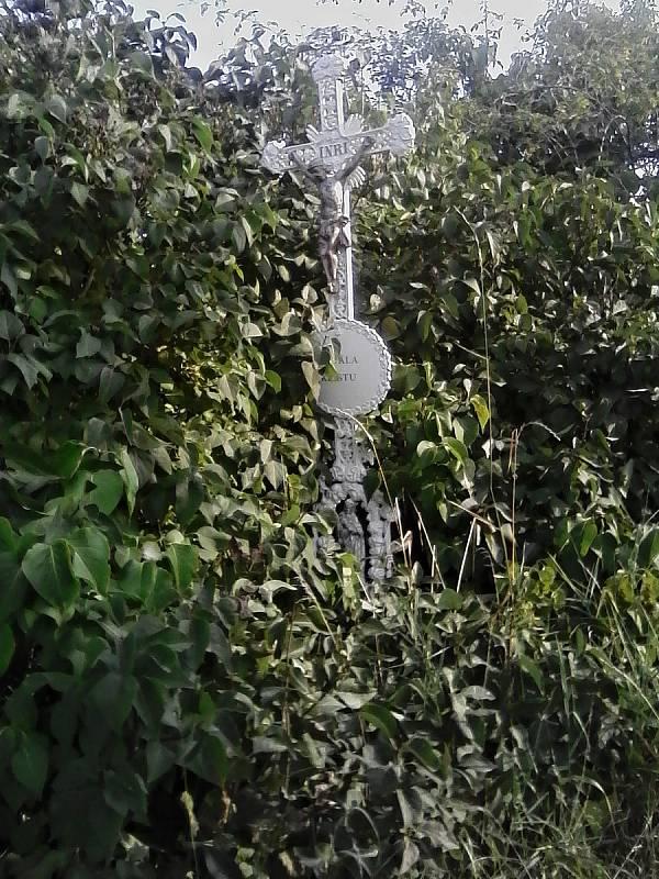 Litinový křížek vykoukal z křoví.