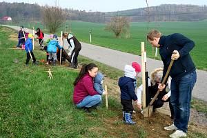 Obyvatelé Nedrahovic na Příbramsku a ze sousední Jesenice se v dubnu pustili společně do výsadby nové dubové aleje na kopci Kamenice u Hadáčkova kříže.