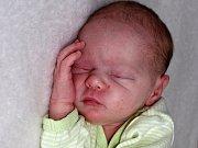 ADÉLKA SVOBODOVÁ se narodila v sobotu 18. března o váze 2,54 kg a míře 46 cm Adrianě a Janovi z Kosovy Hory. Dětstvím bude holčičku provázet bráška Honzík.
