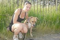KAROLÍNA Kluchová s fenkou Amy pod základní školou ve Školní ulici se teď při venčení omezuje jen na cestu po chodníku. Jak pes zaběhne do trávy, nestačí prý z něho sbírat klíšťata.