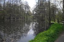 Úprava Čekalíkovského rybníku a jeho okolí bude dalším z projektů Zelené páteře města Příbram.