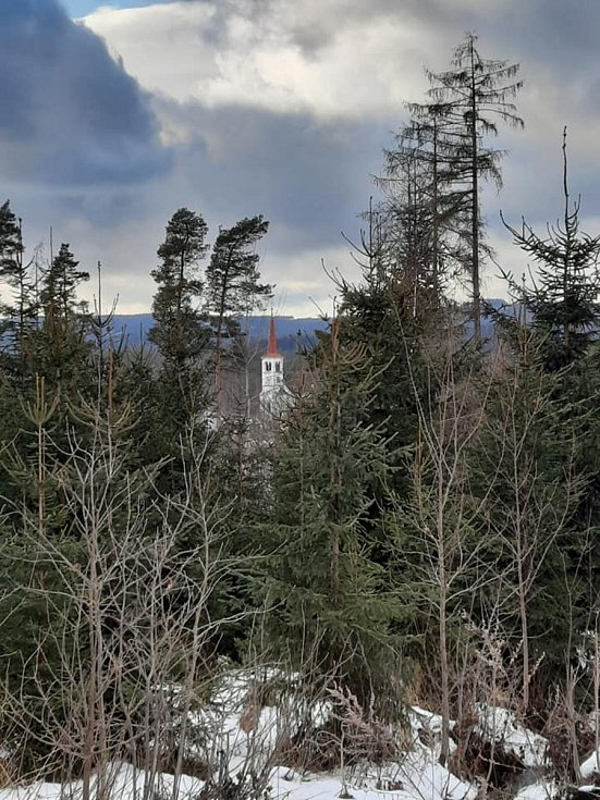 Krásná příroda podél stezky Vysoká Pec - Tisová - Bohutín