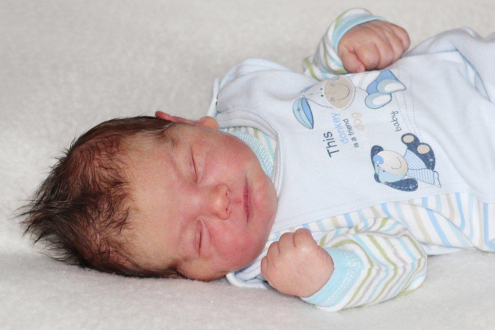 Bořivoj Hříbal z Mokrovrat, narozený 8. ledna 2019 rodičům Jindřichovi a Petře, vážil 3900 g, a doma má tři bratry Jindřicha (15), Přemysla (11) a Otakara (4).