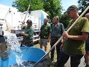 Do Vltavy, Sázavy, Labe a dalších řek a rybníků chtějí rybáři vrátit úhoře říčního.