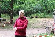 V sobotu se v Dobříši konal již třetí ročník Hafcupu. Pořádal ho dobříšský útulek a na jeho podporu také putoval výtěžek z akce. Účastnit se bylo možno se svým psem, nebo také s vypůjčeným z útulku. Celkem odstartovalo 20 jednotlivců a skupin.
