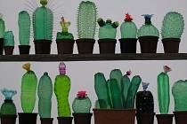 Tvorba Veroniky Richterové - plastika z pet lahví: kaktusy.