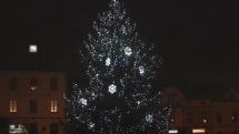 Rozsvícení vánočního stromu v Sedlčanech 28. listopadu 2020.