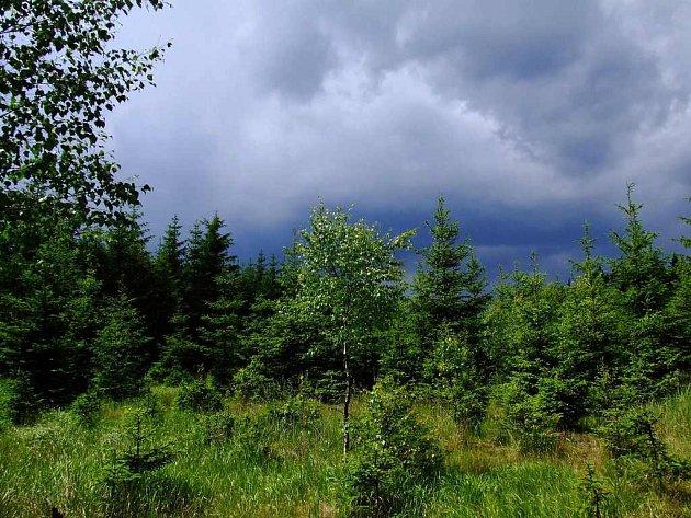 Před bouří.