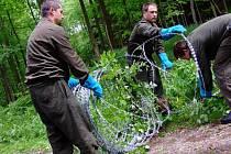 Ženisté začali rozebírat žiletkový plot na kótě 718 v Brdech, v místě, které bylo vybráno pro případné umístění americké radarové základny. Vojáky navštívili aktivisté z řad Greenpeace.