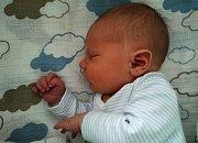 Denis Procházka se narodil 10. Listopadu s váhou  4,09 kg a mírou 51 cm Michaele a Davidovi z Příbrami. Doma čeká na brášku David (5).