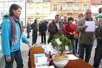 BARBORA Klecandová z Balkovy Lhoty na Farmářském trhu prodává  smolnou mast a smolný krém.