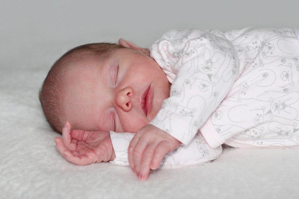 Julie Kubanová z Jinců, narozená 11. ledna 2019 rodičům Lukášovi a Michaele, s váhou 3390 g a mírou 51 cm.