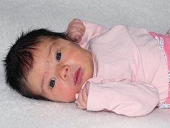 Leontýna Havlátová se narodila 26. října s váhou 3,46 kg a mírou 50 cm Lucii a Lukášovi z Příbrami. Doma čeká Liborek (3).