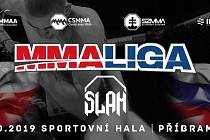 V Příbrami proběhne galavečer MMA GCF 50: CAGE FIGHT Příbram.