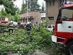 Silný vítr zaměstnal středočeské hasiče.