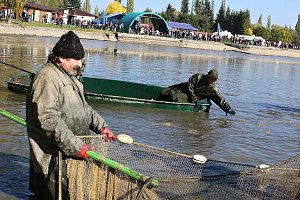 Sobotní výlov Sadoňského rybníku v Romžitále