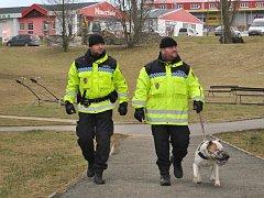 Městská policie Příbram, psovodi v Brodské ulici.