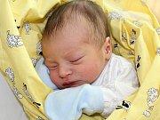 VOJTÍŠEK ŠTĚPÁN se narodil v neděli 30. července o váze 2,90 kg a míře 48 cm rodičům Kateřině a Martinovi z Milína.