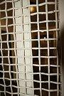 Ve věznici Bytíz proběhl ve středu 19. dubna další velký zásah. Následoval přesně dva měsíce po první zde uskutečněné policejní akci, která byla také zaměřena na rozsáhlou a organizovanou drogovou trestnou činnost.