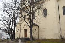 Lípy u kostela sv. Vojtěcha v Příbrami
