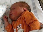 Růženka se narodila 24. října s vahou 3,8 kg Růženě a Michalovi z Příbrami. Doma čekají sestřičky Andělka a Eliška.