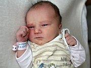 ADÉLKA PROCHEOVÁ se narodila v neděli 5. března rodičům Lucii a  Petrovi z Drahlína. Sestřičky jí v ten den navážily 3,43 kg a naměřily 50 cm.