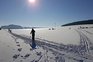 Běžkařská trasa z Příbrami kolem Brodu.