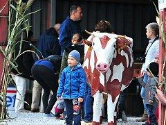 Dny otevřených dveří v Zemědělském družstvu Krásná Hora nad Vltavou přilákaly stovky návštěvníků.