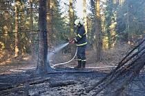 V okraji požářiště na rozloze zhruba 20 x 20 metrů bylo ohniště, z něhož se oheň rozšířil do okolí a zapálil hrabanku a poté i stromy a větve.