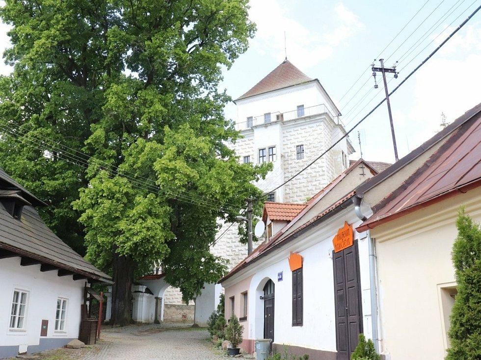 Zámek v Rožmitále pod Třemšínem.