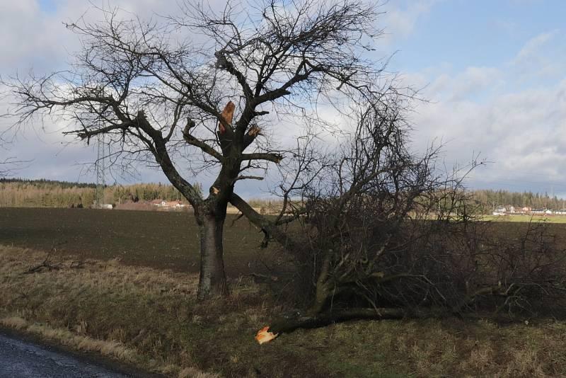 Orkán se na Příbramsku vyřádil hlavně na stromech.