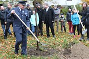 V Petrovicích v neděli 28. října zasadili lípu svobody.