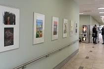 Galerie v příbramské nemocnici.