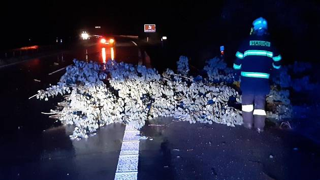 Středočeské hasiče při bouřce v noci na středu 30. června masivně zaměstnávalo odstraňování spadlých stromů.