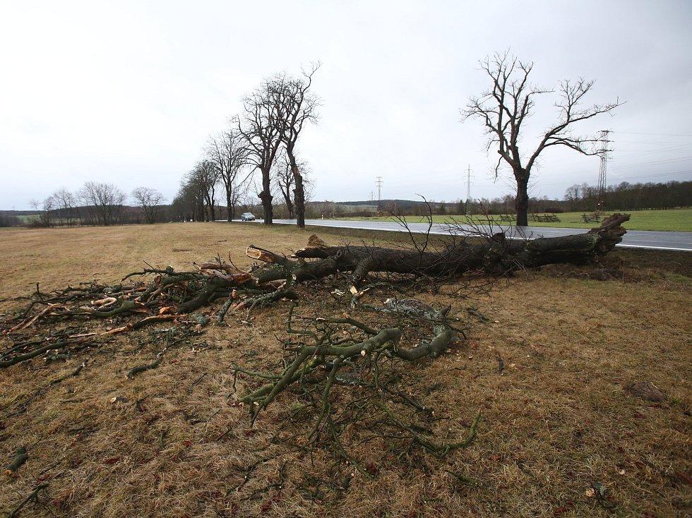 Vichřice vyvracela stromy. Na mnoha místech to zkomplikovalo i dopravu.