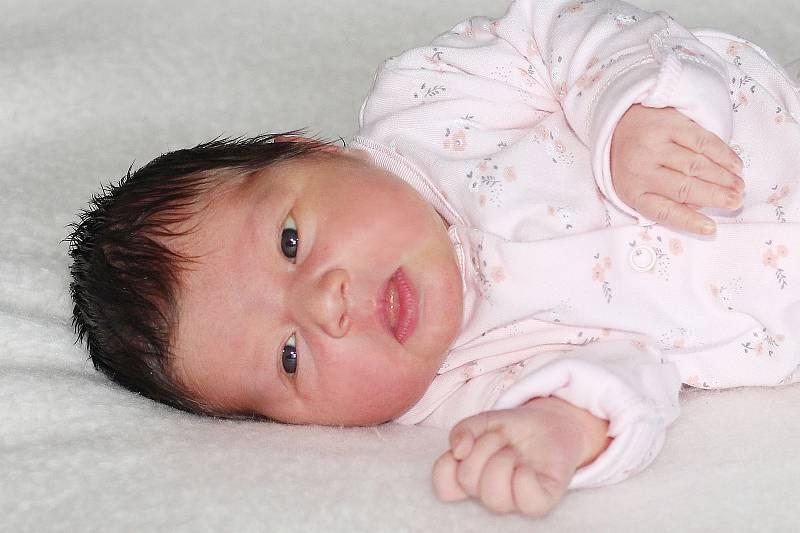 Lilien Fořtová se narodila 14. září 2021 v Příbrami. Vážila 3550 g a měřila 46cm. Doma ve Věšíně ji přivítali maminka Markéta a tatínek Tomáš.