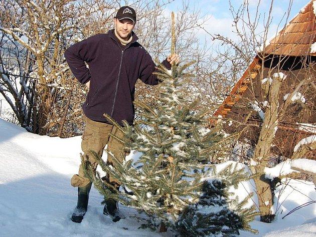 Prodejce vánočních stromků Michal Bernard drží smrk pichlavý